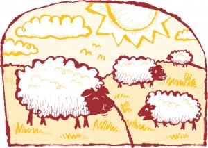 sheep_in_pasture_red_lines