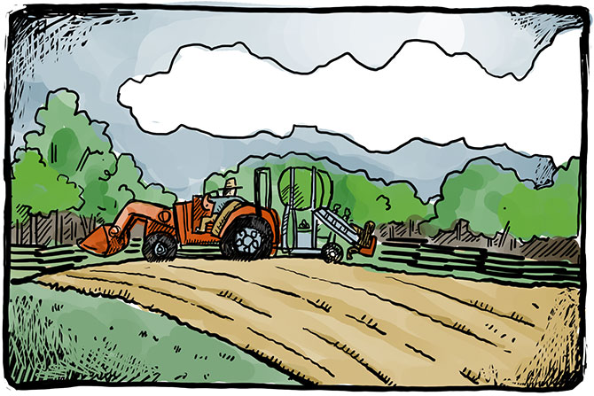 Tractor-Planting