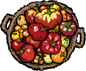 tomatoes_basket