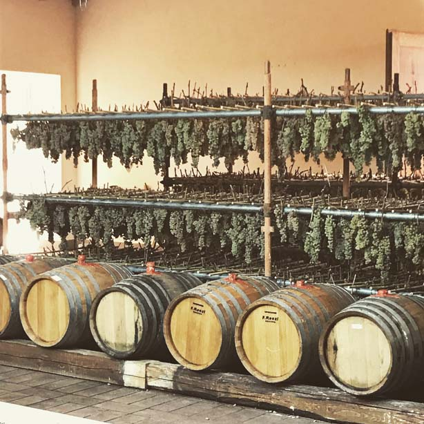 A Tuscan winery