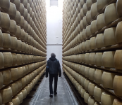 Photos: Ari Goes to Italy on a Parmigiano-Reggiano Mission